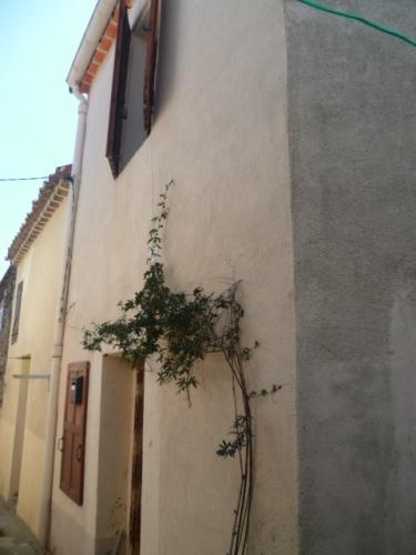 Vente Maison 3 pièces SAINT THIBERY 34630