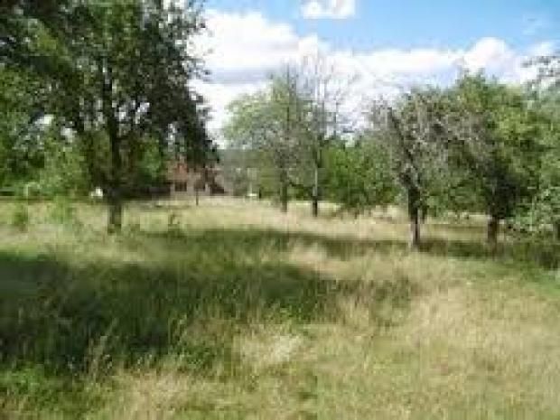 33 saint medard en jalles archive terrain n 68965 immo for Entretien jardin saint medard en jalles