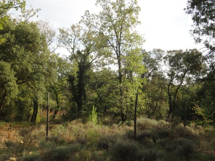 30 arpaillargues et aureillac archive terrain non for Terrain non constructible 06