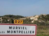 HouseMURVIEL LES MONTPELLIER34